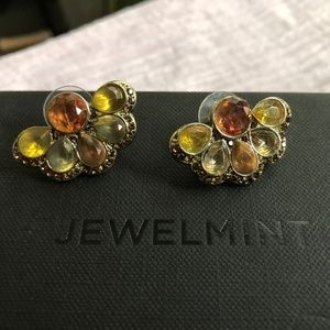 Jewelmint Flabella Earrings
